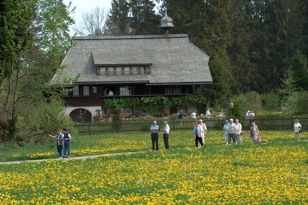 Landhotel zum Ochsen - фото 21