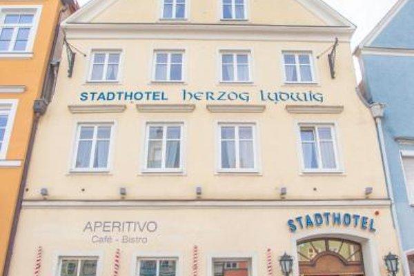 Stadthotel Herzog Ludwig - фото 22
