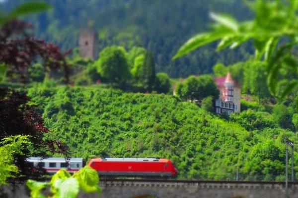 Schloss Hornberg - фото 21