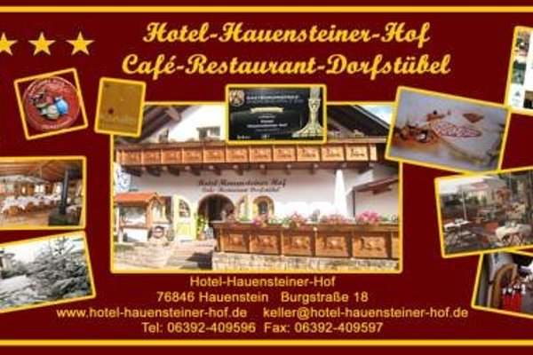 Hotel-Hauensteiner-Hof - фото 11