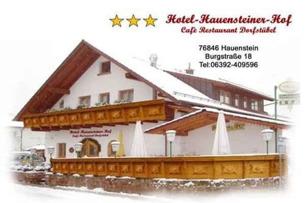 Hotel-Hauensteiner-Hof - фото 21