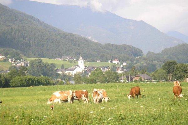 Loitzbauer Ferienwohnungen - фото 19