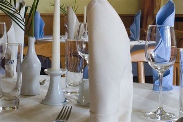 Hotel and Restaurant Gartenstadt - фото 8
