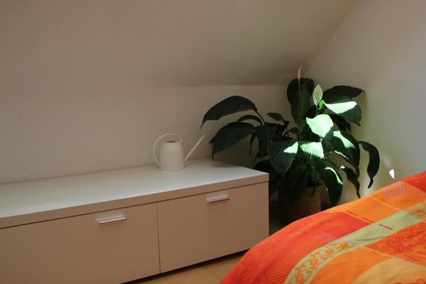 Stella Apartments am Erfurter Dom - фото 21