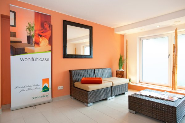 Parkhotel Sonnenberg - фото 6