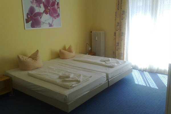 Hotel-Pension Gribnitz - фото 3