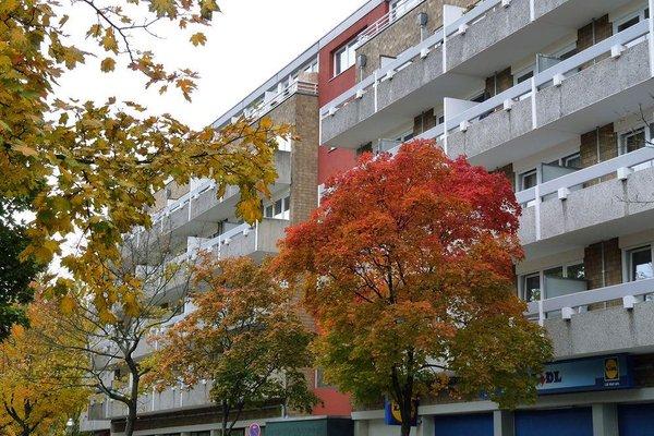 Classic Apartment - фото 15