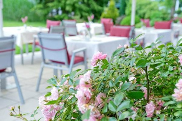 Romantik Waldhotel Mangold - фото 18