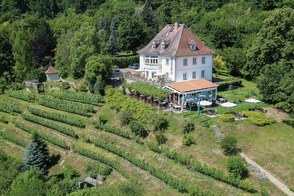 Flair Hotel Villa Ilske - фото 22