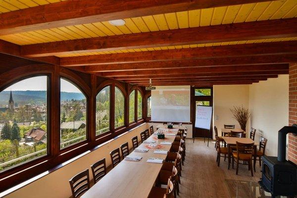 Flair Hotel Villa Ilske - фото 8