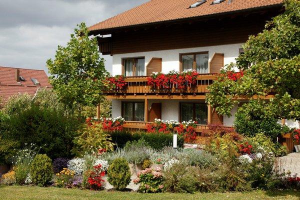 Landhotel Sonnenhalde - фото 23