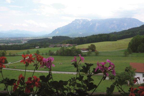 Gasthaus Ulrichshogl - фото 18
