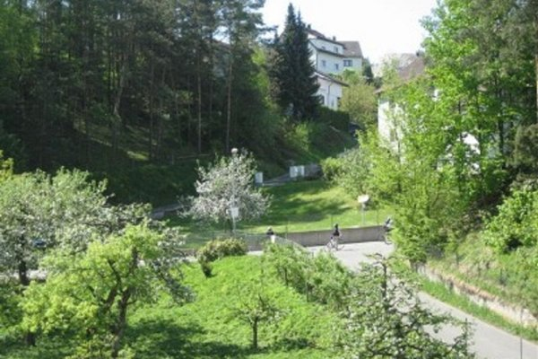 Zur Linde Gasthof - 3