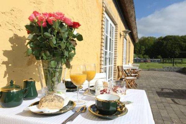 Ryethojgard Bed & Breakfast - фото 4