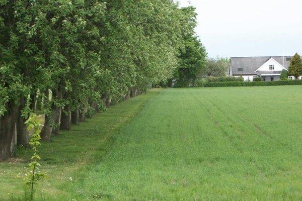 Bindesbolgard Farm Holiday - 13