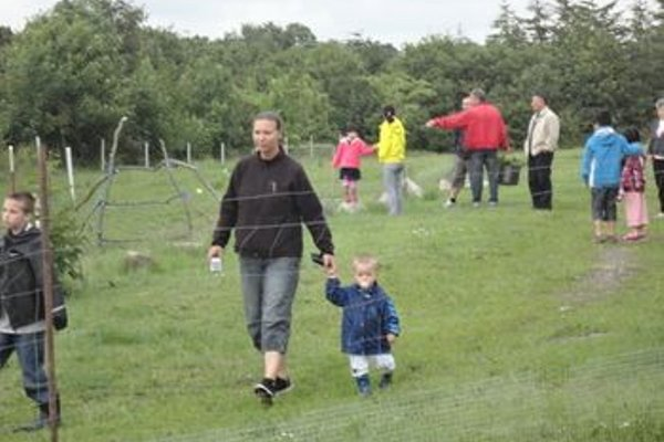 Bindesbolgard Farm Holiday - 17