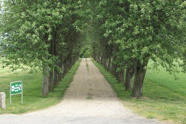 Bindesbolgard Farm Holiday - 19