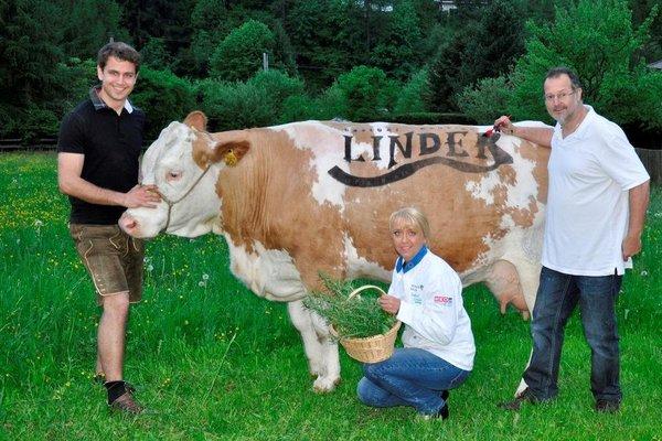 Gasthof - Pension Linder - 11