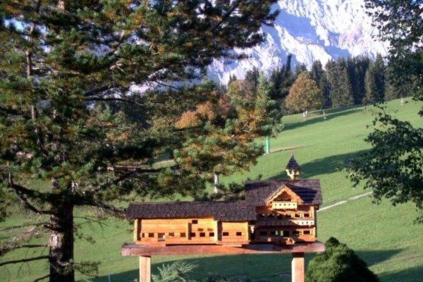 Bauernhof Tritscherhof - фото 8