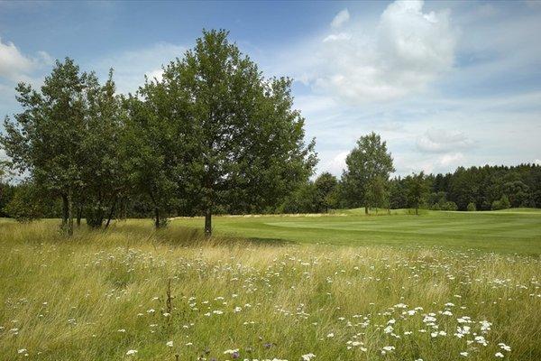Golfresort Waidhofen - фото 13