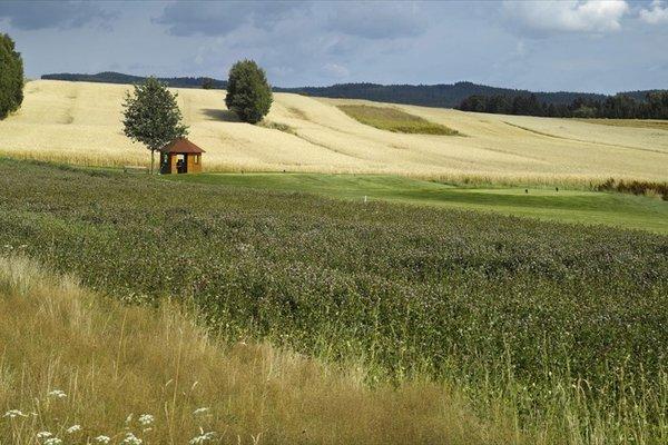 Golfresort Waidhofen - фото 18