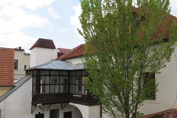 Hotel Cesky Dvur - фото 21