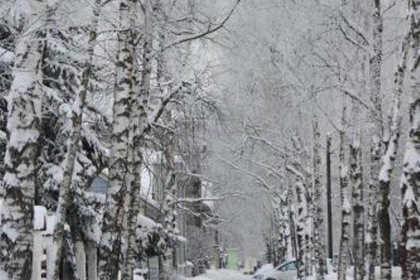 Hotel Villa Wesset - фото 18
