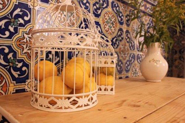 Nochela Sevilla - фото 50