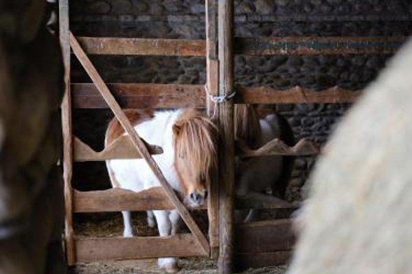 Turismo Rural Sant Marc - Singular's Hotels - фото 17