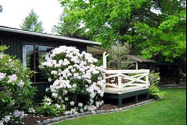 Creel Lodge - фото 16