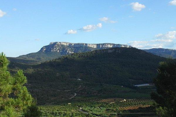 Cal Cabre del Priorat - фото 21