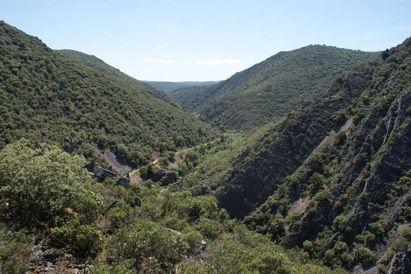 Lincetur Cabaneros - Centro de Turismo Rural - 11