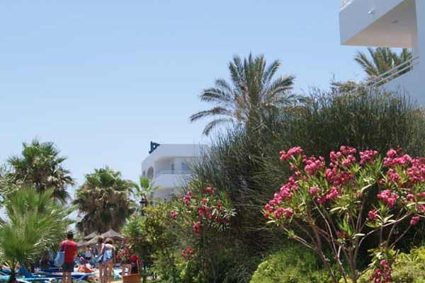 Hotel Best Oasis Tropical - фото 18