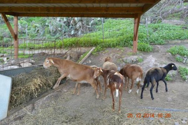 Hotel Rural El Mondalon - 19