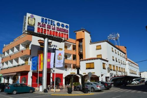 Hotel Flor de la Mancha - фото 21