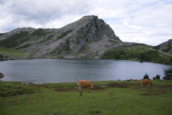 El Conventu del Asturcon - фото 21