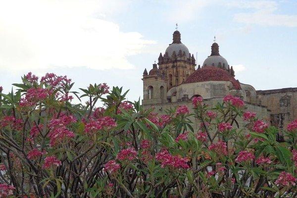 Hospederia La Reja - фото 23