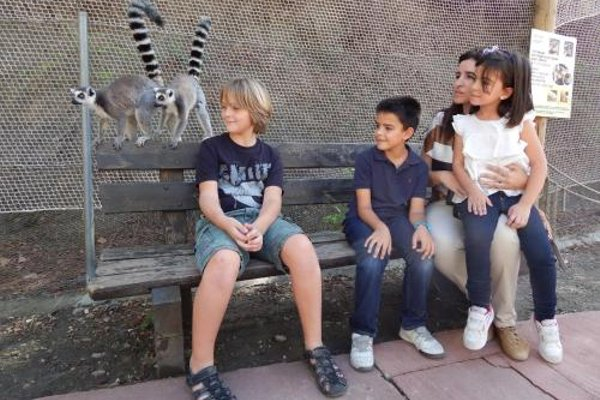 Hotel Selwo Lodge - Includes Animal Park Tickets - 18
