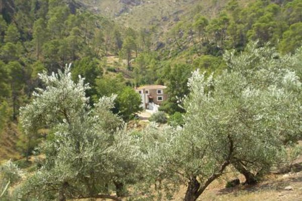 """Hotel Rural """"Hospederia Las Canadillas"""" - фото 7"""