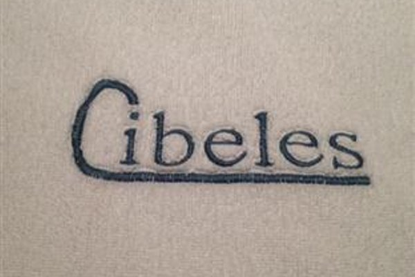 Pension Cibeles - фото 13
