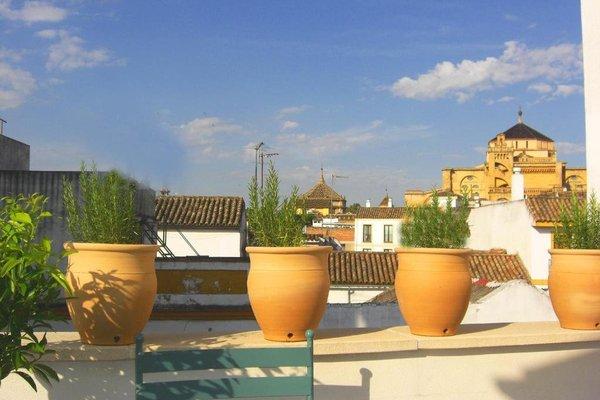 Apartamentos Los Patios de la Juderia - фото 10