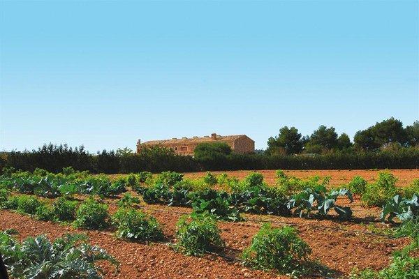 Agroturismo Son Terrades - фото 11