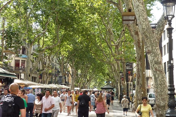 Barcelona House - фото 17