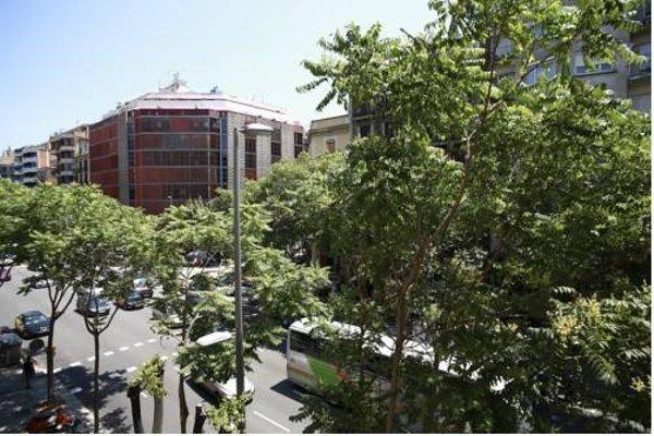 Suites Ara367 Barcelona - фото 22