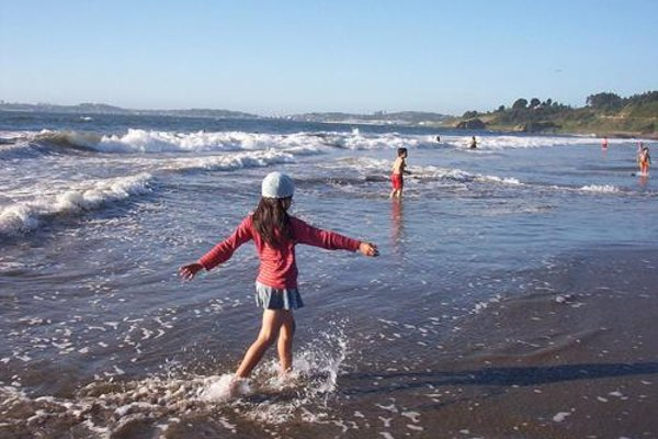 Apartamentos Petit Blau - фото 17