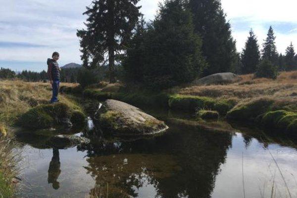 Modern chalet Na Zlatniku - фото 16