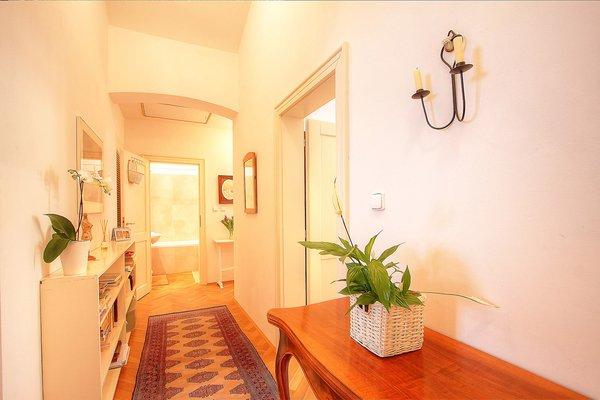 Botanical garden apartment - фото 21