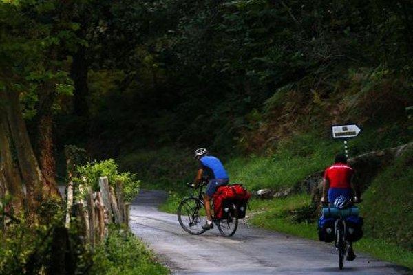 Apartamentos La Pontiga *** - фото 4