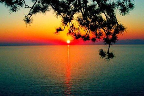 Гостевой дом «Белый» - фото 21