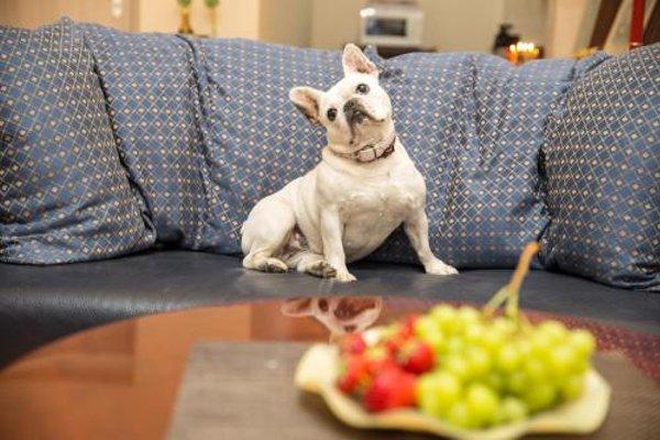 Apartmany Amethyst - фото 17